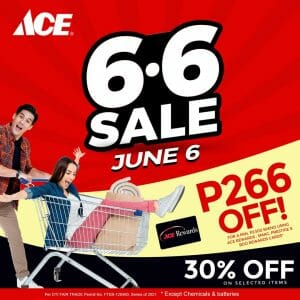 ACE Hardware - 6.6 Deal: Get 30% Off on Selected Items